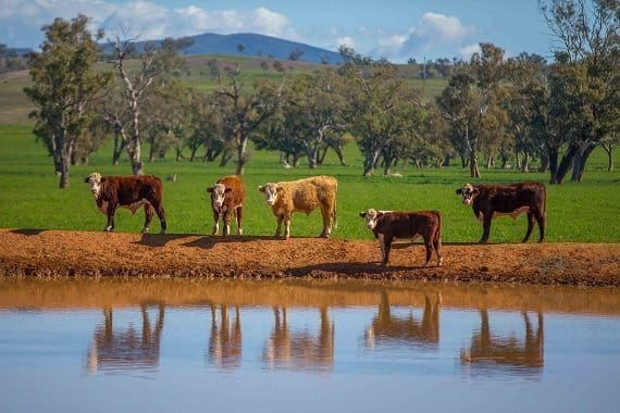 Photo of Australian Government Department of Agriculture and Water Resources