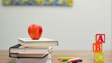 Photo of Teaching Capabilities Statement