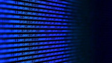 Photo of Australian Informatics Olympiad