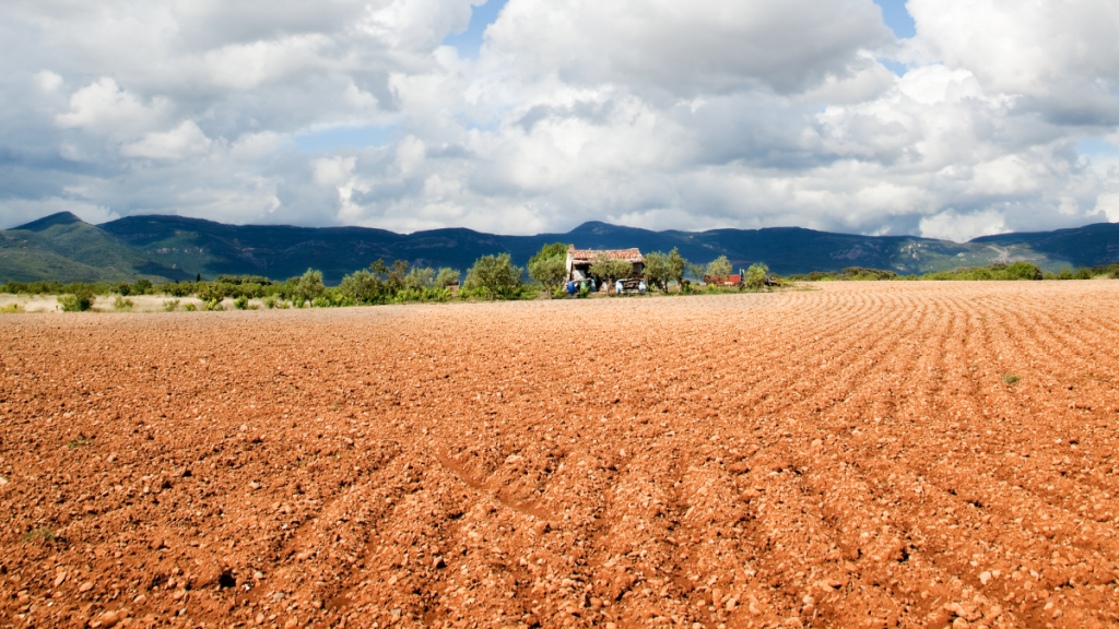 Agriculture in Australia with NT Farmers