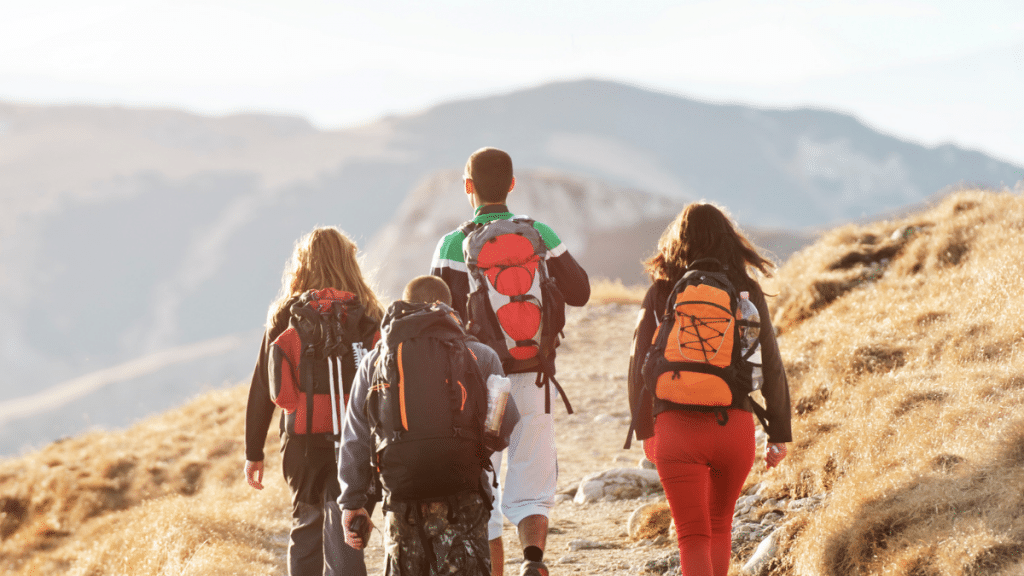 How you could benefit from School Excursions and Camps